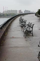 NYC (rcrowejmu) Tags: park city nyc newyorkcity morning travel usa ny newyork nature rain fog skyline buildings outdoors