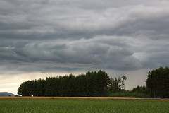 IMG_9292 (worldmix) Tags: storm rain clouds wolken thunderstorm gewitter approaching sturm