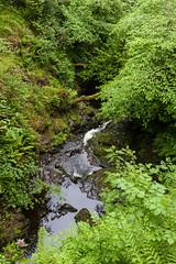Glenariff Forest Park (ghostwheel_in_shadow) Tags: ireland wet water river europe unitedkingdom northernireland moisture damp ulster antrim moist wetness glenariffforestpark