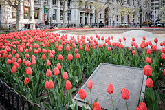 Bowling Green, New York. April, 2016. (Guillermo Esteves) Tags: newyorkcity newyork us unitedstates financialdistrict bowlinggreen fujifilmxt1