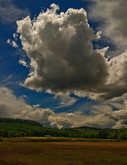 Clouds over our Pasture (autumnhillswoollens685) Tags: 35mm lens pasture pacificnorthwest cloudporn ais d800 cumulusclouds westernwashingtonstate