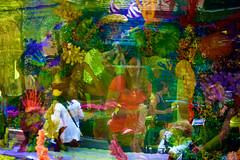 IMG_0314 (Vicr of Flickr) Tags: street travel vegas blue trees sky people usa sun gambling tourism architecture buildings us lasvegas nevada sightseeing casino tourists palm nv streetscenes lasvegasboulevard