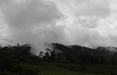Alajuela (elisecavicchi) Tags: shadow summer cloud costa mist mountain storm rain fog dark landscape day moody view hill overcast rica nostalgia vista gloom melancholy overlook slope obscure alajuela