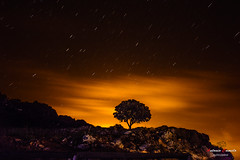 Grazalema. (Antonio Camelo) Tags: trees sky naturaleza nature night noche landscapes photo nikon colours foto colores cielo