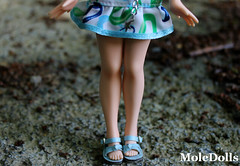 Details: Blue Outfit & Pure Neemo Body ♥