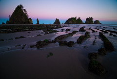 Striations in the Sand at the Point of Arches (AlexKrengel) Tags: ocean camping sea seaweed beach water sunrise landscape photography coast washington nationalpark sand nikon nps tide wideangle kelp lowtide olympic neahbay d800 capeflattery makah shishibeach pointofarches petroleumcreek alexkrengel nationalbeach