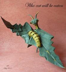 who eat will be eaten (-sebl-) Tags: mantis leaf origami mc caterpillar unryu lokta sebl gachepapier
