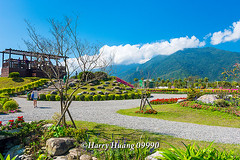 Harry_09990,,,,,,,,,,,,,,, (HarryTaiwan) Tags: taiwan    d800                  harryhuang     hgf78354ms35hinetnet