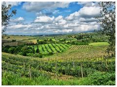 Panorami toscani ( bric72) Tags: sky italy panorama verde green clouds landscape italia nuvole wine hills cielo tuscany chianti siena toscana vino colline limite vigneti