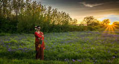 beauty (kalpurush :)) Tags: travel sunset red portrait sky people sun flower tree green love nature landscape flickr sony victoria vancouverisland tamron environmentalportrait sonya77