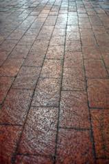 Floor Convergence (Jo-Slowly Warming up Again!) Tags: converginglines beginnersdailychallengewinner