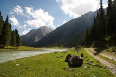Trekking around the Karakol Valley & Gorges (20 of 62) (stefanos-) Tags: lake travelling forest trekking river asia glacier backpacking karakul centralasia kyrgyzstan kyrgyzrepublic sovietrepublic carlzeissdistagont2821zf2 alakullake