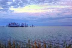Approaching Sunset Behind Us (HDR) (David Warlick) Tags: trees lake cypress hdr mattamuskeet mattamuskett