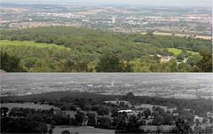 Beacon Hill, Loughborough, 1981-2013