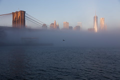 half & half (Barry Yanowitz) Tags: nyc newyorkcity bridge ny newyork weather fog brooklyn downtown manhattan worldtradecenter bridges brooklynbridge wtc nycity 718 brooklynbridgepark 1worldtradecenter empirefultonferry 1wtc