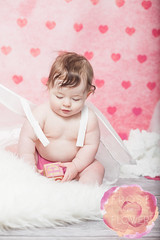 02022014-MeadowValentine-124 (FrostOnFlower) Tags: cupidbaby minneapolisbabyphotographer twincitiesbabyphotographer valentineminisession