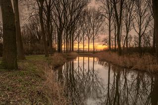 Morgengloren - Morning light - Damme