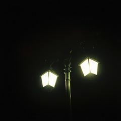 NIGHT EYES. (Bitroos) Tags: bi tr bitroos