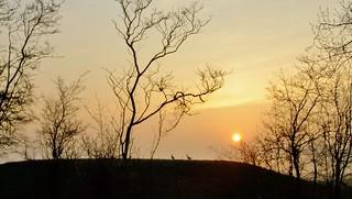 ..Een mooie morgen ..