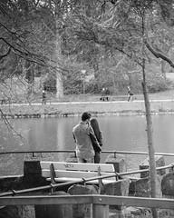 Frhling im Rombergpark (noodles_do) Tags: film canon germany deutschland spring streetphotography dortmund frhling 24105 rombergpark presets 60d vsco