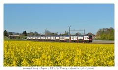 KISS RABe 511 - Nyon (CC72080) Tags: train kiss sbb nyon cff automotrice rabe511 régioexpress