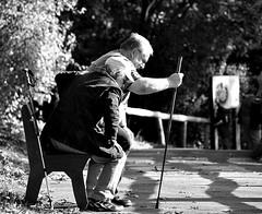 _auf, auf ins wochenende......;-) (SpitMcGee) Tags: people menschen aachen parkbench tierpark parkbank hff spitmcgee happyfencefriday