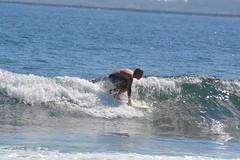 DSC_0079 (aliciadesign) Tags: surf whales bigisland honolii