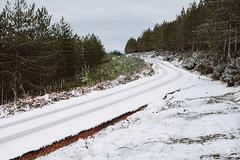 Snow me the way (Antnio Magalhes) Tags: road trees winter snow way fuji bend route arbres estrada neve fujifilm neige inverno chemin caminho rvores curva xseries linver xe2