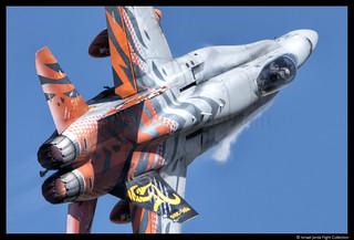 F18 Tiger Ala15 (2016)