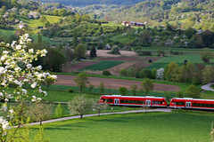 Like a toy train (the_orl) Tags: railroad red summer tree train canon felder rail zug panning landschaft tbingen fahrt lndlich ammertal t6s 760d