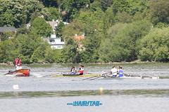Veslárska regata o pohár SNP-51