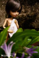 Captulo 74(3/4) (Osmundo Gois) Tags: sexy nude doll groove gt gyro taeyang
