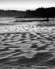moving sands (_Matt_T_) Tags: ocean bw beach long bc pacific pentax britishcolumbia tofino pacificrimnationalpark smcpda70mmf24limited niksilverefexpro2 k5iis