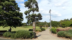 Sydney Park - Snt-Peters - NSW (1) (nicephotog) Tags: park trees urban plants game building green nature grass bike bicycle garden ride suburban outdoor path walk lawn scooter recreation seating stroll complex