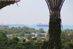 Ships Waiting on the Singapore Strait  from the OCBC Skyway at Gardens by the Bay (Singapore - May 15, 2016) (cseeman) Tags: flowers trees plants green boats harbor singapore waiting ships cargoships parks overcast cargo hazy containership publicgardens greenspace tankers oiltanker urbanpark crudeoiltanker gardensbythebay singaporegardens marinabaysands singaporestrait tradingcenter singaporeharbor portofsingapore gardensbythebaysingapore singapore2016 singaporetrading