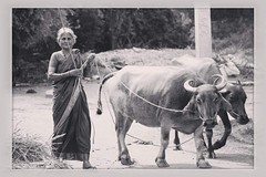 Working farmers behind our life ! (allwincy) Tags: life india photography workers farmers agriculture natgeo travelphotography blackanwhitephotography behindlife