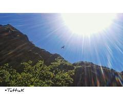 Travel in Georgia | Georgia 2016 April | TattaK Photography (TattiaK) Tags: travel blue camping camp sky sun bird beautiful georgia colorful country beam april traveling beams sunbeams carpediem borjomi sunning 2016