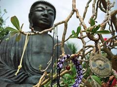 Lahaina Jodo Mission (Penseroso) Tags: buddha maui lahaina