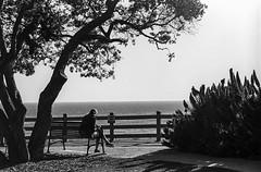 Negative Scan 35mm B&W (Ls370) Tags: ocean sea sky beach 35mm santamonica grain minimal negative 35mmfilm land nikonfm10 bnw camerados tourcalifornia lostinla minimalmood discoverla igmood illgrammers bnwmood unlimitedminimal gearednomad mentsevlook bnwsouls tourcali