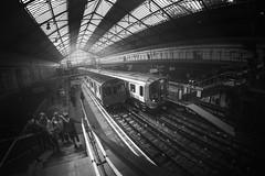 Earl's Court (www.javierayala-photography.com) Tags: inglaterra england london blancoynegro train underground tube fisheye trainstation londres tubestation londontube earlscourt