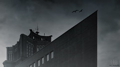 =] TEGEL | ms borsig [= (oolcgoo) Tags: white black berlin architecture germany deutschland sony architektur f28 slt ssm tegel borsigturm sal1650