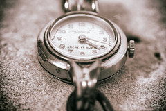 Time (giloudim) Tags: macro vintage studio flash mtal intrieur montre josphine macromondays canon7dmarkii mmtime