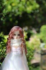 Sakura Fairy (DaiMorWong) Tags: dim elf bjd slimmsd msd oscareyes