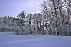 2009Jan-Frimas-21 (jdbrochu) Tags: photographie hiver pont troisrivieres rivage laneige pleinair vieuxtroisrivieres