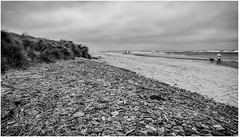 Alnmouth Beach . (wayman2011) Tags: uk people beach coast seaside seascapes pebbles northumberland alnmouth canon5d lightroom bwlandscapes wayman2011