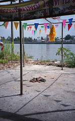 (beccachairin) Tags: leica color film 35mm thailand bangkok analogue c1 kohkret