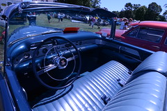 1954 Buick Roadmaster (wildukuleleman) Tags: show hot classic cars abbey club buick cool rat day 1954 rod rods fathers automobiles rotary roadmaster 2016 orginal autoi