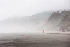 (Lynt) Tags: beach canon eos is w 5d usm kalaloch 70200mm canoneos5d f28l kalalochbeach