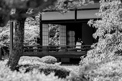 Nijo castle, Kyoto, Japan (b.7lune) Tags: japan temple japanesegarden kyoto zen shire japaneseculture japanesewedding nijocastle japanesetradition