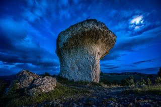 The magic mushroom.